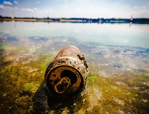 What Landscapers (and homeowners) should know about Stormwater Pollution and how to help prevent it!